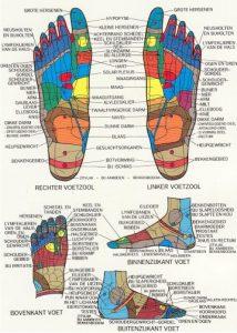 voetreflexologie reflex zones